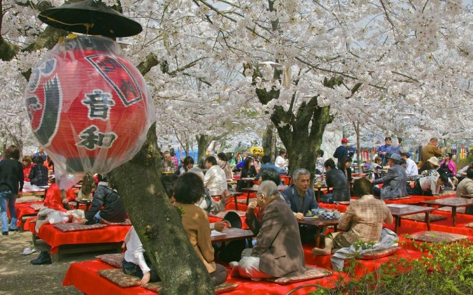 Top 6 Festivals and Celebrations in Japan
